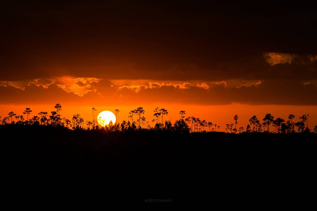 the best photography spots at the everglades national park