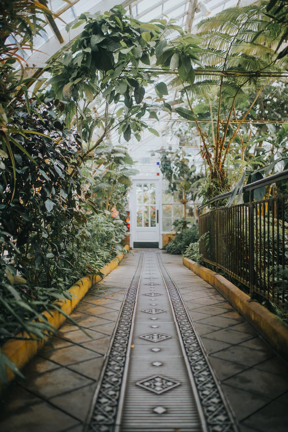 best photography spots in sf california full of flowers