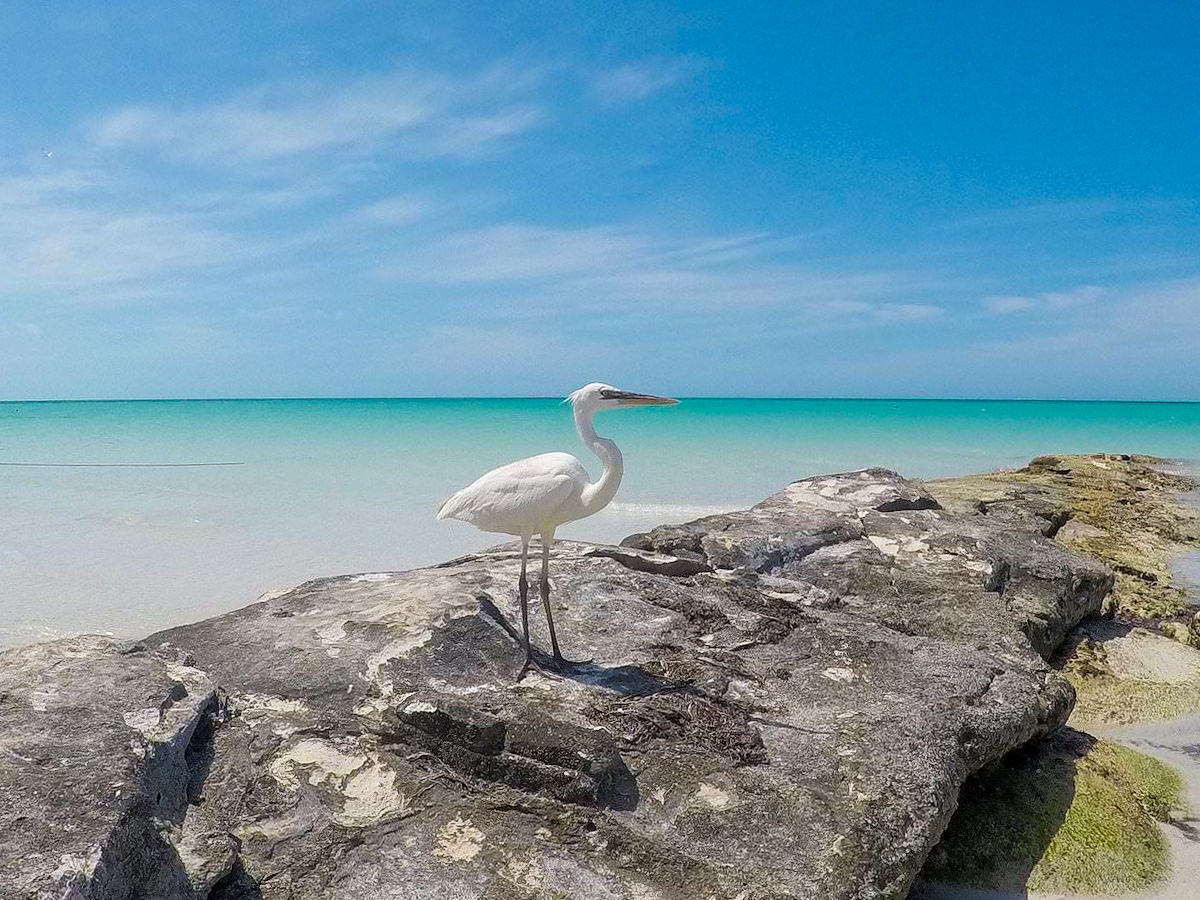 best photography locations in holbox mexico