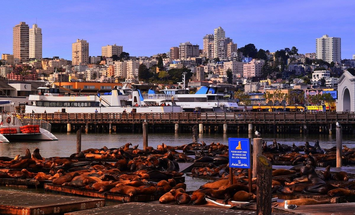 Where is pier 39 in san francisco, best photography spots in san francisco california
